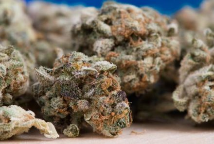 Today's Top Marijuana Stock News: Surterra's $65M Raise, GTI's CEO Departure, Avicanna And Daabon
